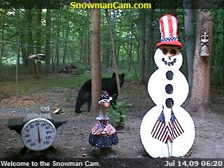 First appearance of a bear since the 4th of July Party. Thank you to Suzanne Hall from Falls Church, Virginia for sending it in.