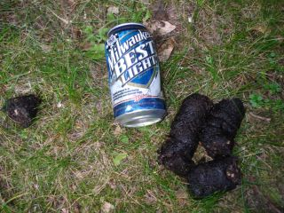 Present left by black bear in our front yard. And it wasn't the beer!