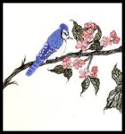 BlueJay perched on a branch. Painting courtesy of Tansy Phillips.
