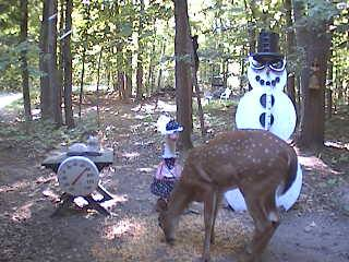 A late season fawn stops by to visit the snowman cam.